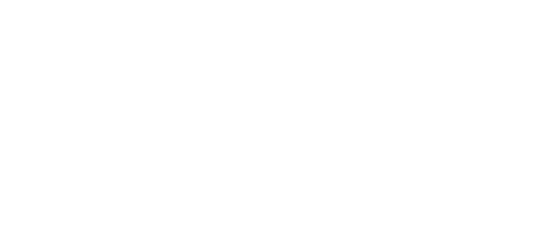MAX-TRAVEL_Bildmarke_weiss